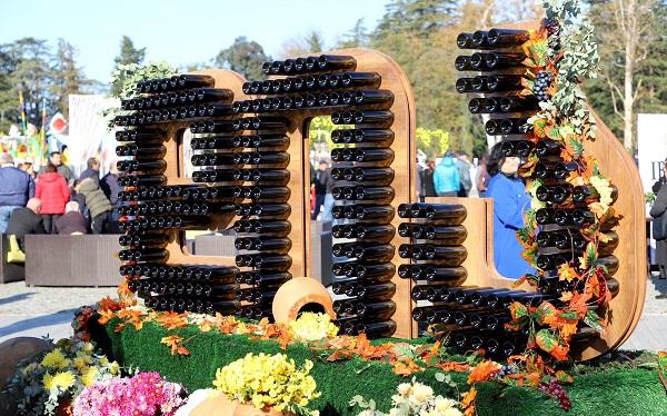 """Colchian Wine Festival """"Dia"""""""